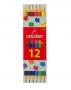 สีไม้ยาว 2 หัว 12 สี #787COLLEEN
